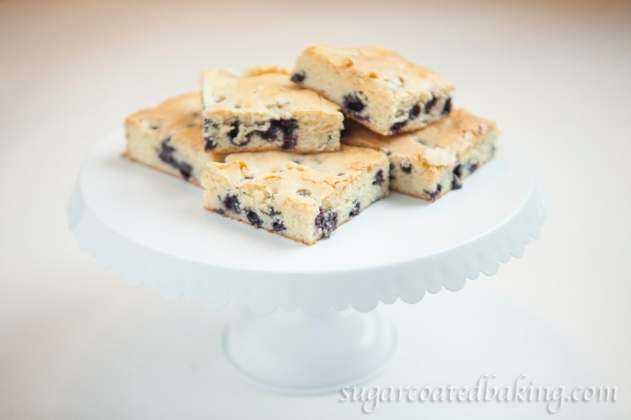Blueberry & White Chocolate Squares