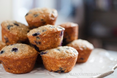 Apple Sauce Blueberry Muffins_Jacob Fergus 1