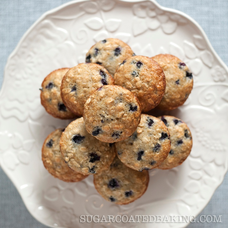 Apple Sauce Blueberry Muffins_Jacob Fergus 3